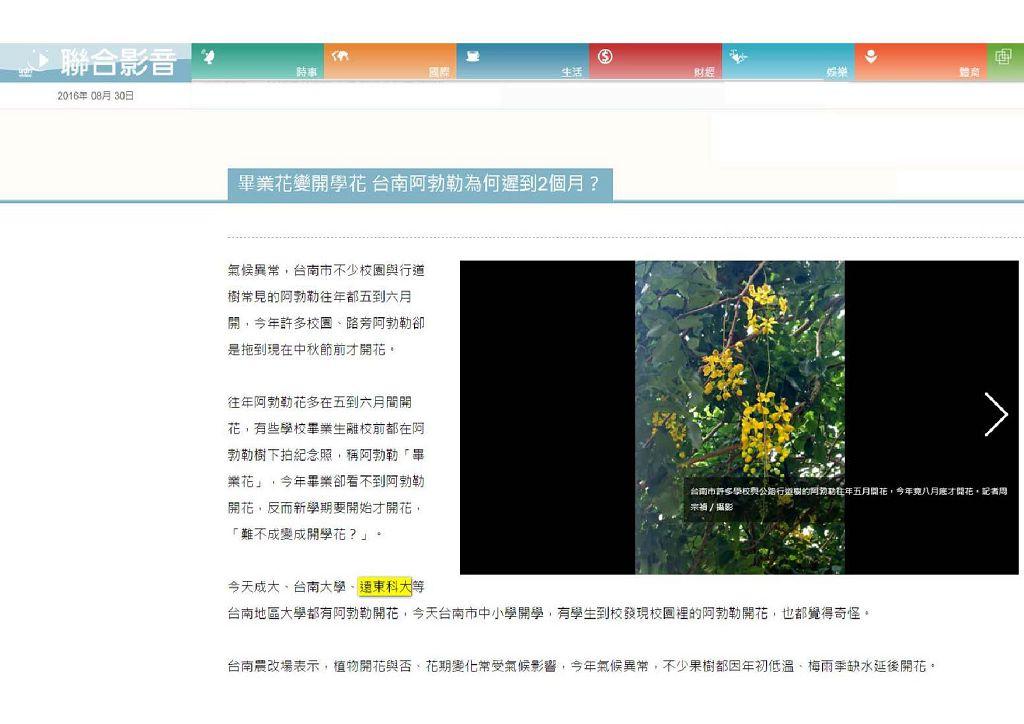 160830_聯合影音網_畢業花變開學花_台南阿勃勒為何遲到2個月(電子報)